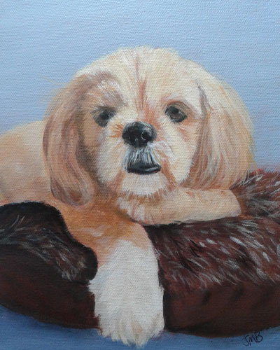 Pet Portrait Of Puppyfat Tony Painted By Janice M Booth